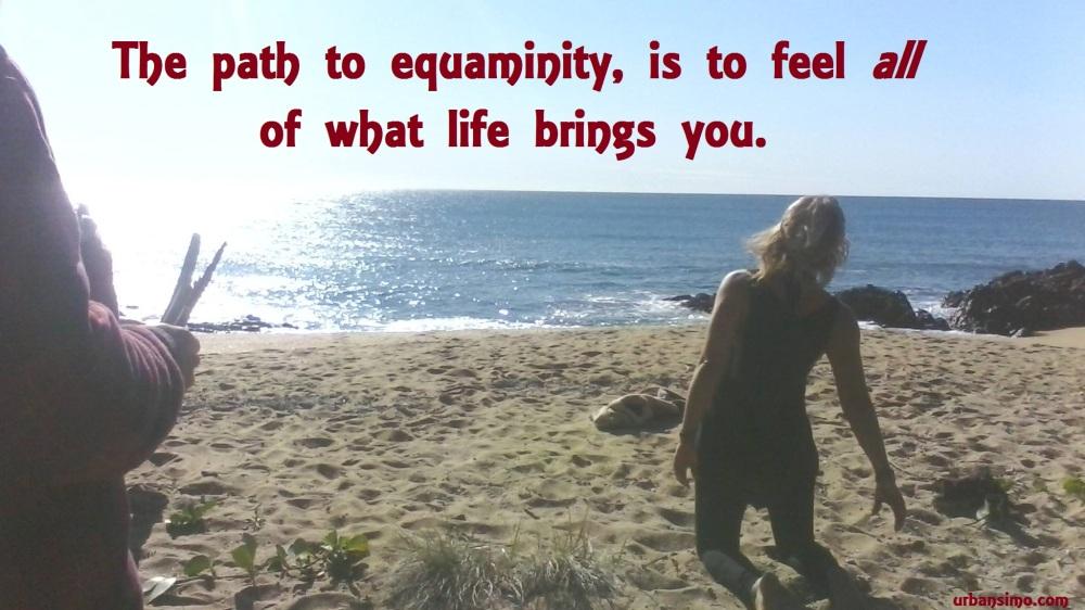 path to equaminity