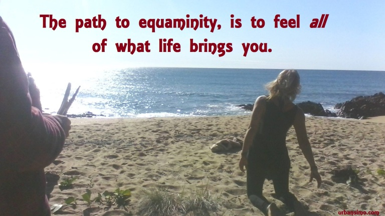path to equaminity